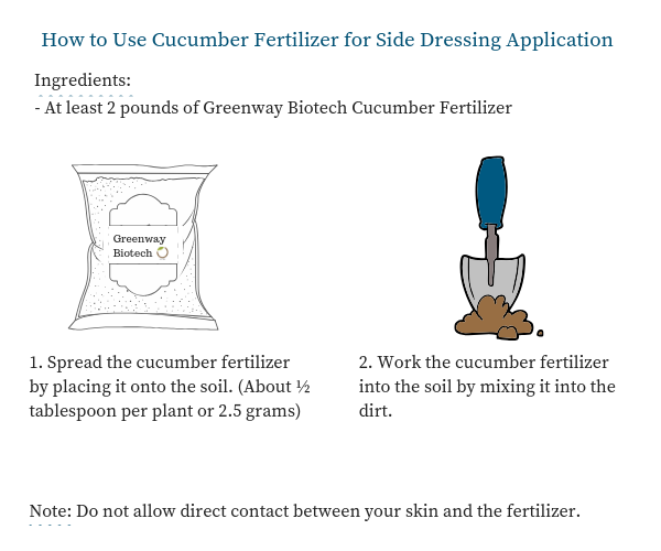 cucumber fertilizer application
