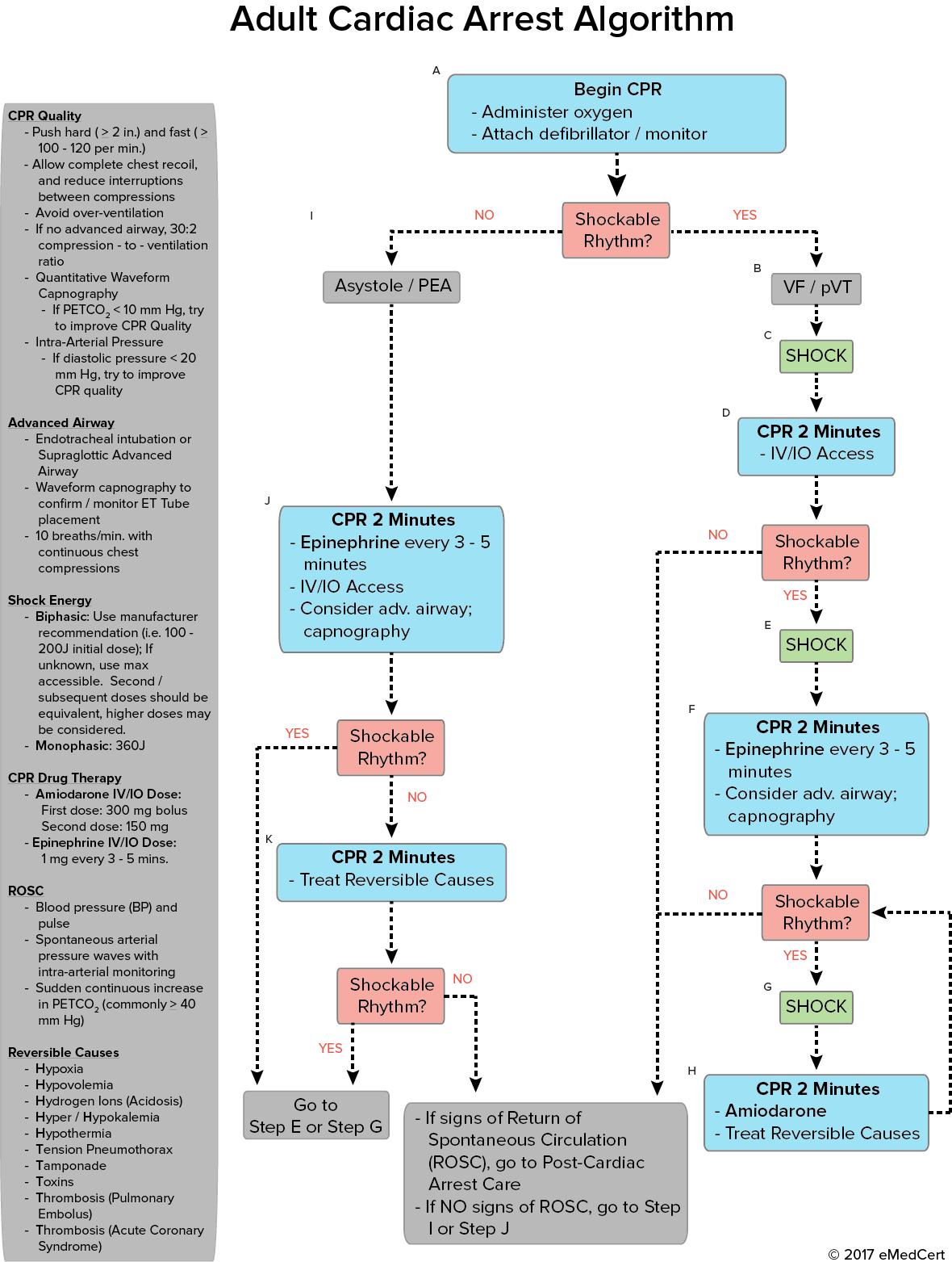 acls algorithm pdf